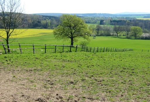 Menden, Wiesen und Wälder zwischen Halingen und Ostsümmern