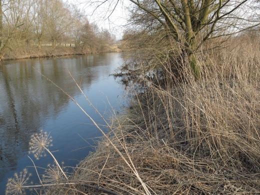 Ruhrufer zwischen Menden-Bösperde und Fröndenberg