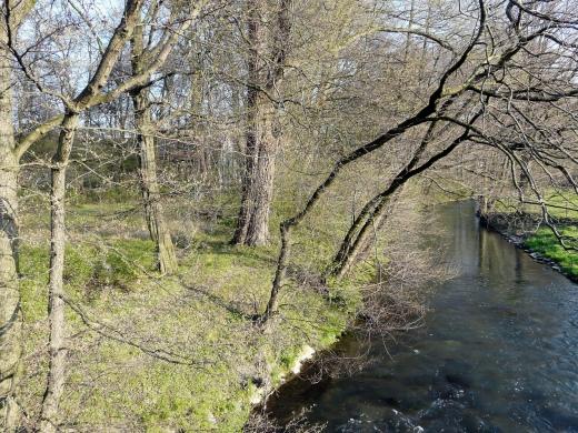 Menden-Lendringsen; Hönne bei Gut Rödinghausen