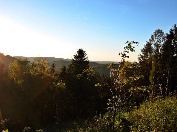 Menden-Asbeck; am Nordwesthang des Ebbergs