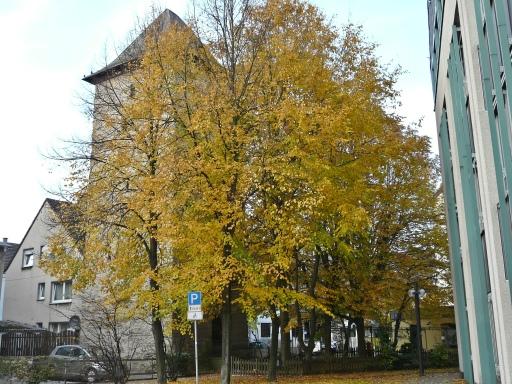 vom Neuen Rathaus auf Poenigeturm