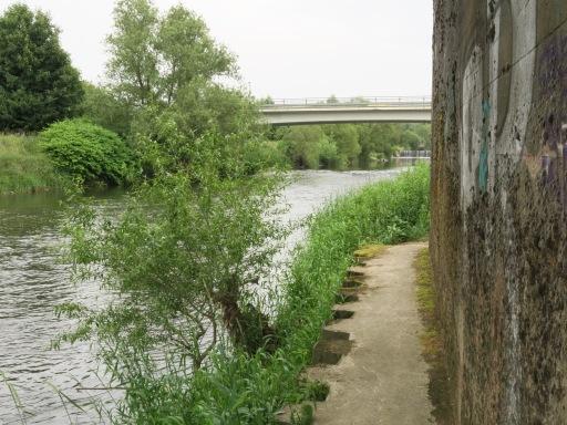 am Ruhrufer in Menden-Schwitten, unter der Bahnbrücke