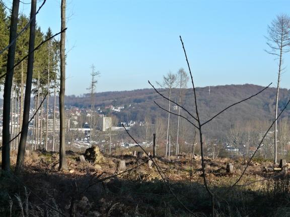 Menden, von der Waldemei auf den Rothenberg