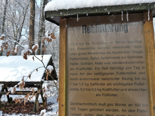 Menden, Waldlehrpfad im Stadtforst Waldemei