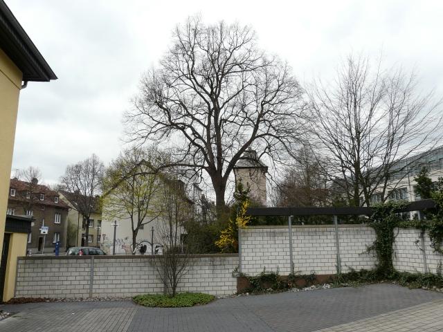 mittlerer Westwall mit Poenigeturm und Neuem Rathaus aus Hinterhofperspektive