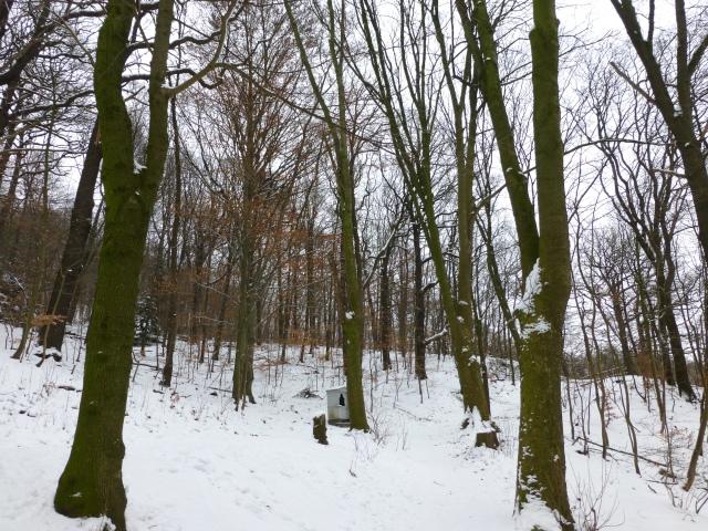 Menden, unterer Kapellenberg mit Schnee und Bildstock
