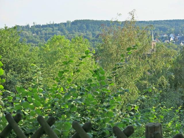 Aussicht vom mittleren/oberen Bromberken auf die Waldemei