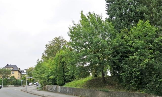 unterer Schwitter Weg mit Westrand Kath. Friedhof und Einmündung Lahrweg