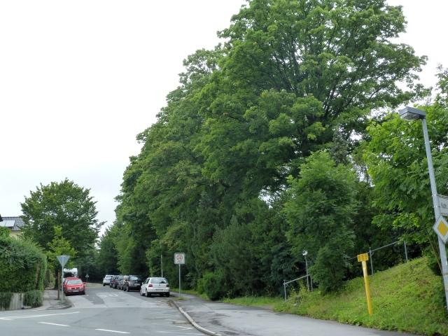 unterer Lahrweg von Westen mit Westende Kath. Friedhof