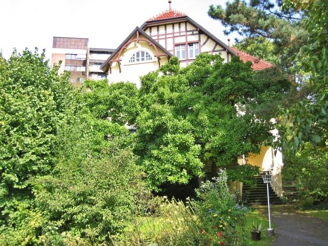 Wilhelmstr./Krankenhauspark
