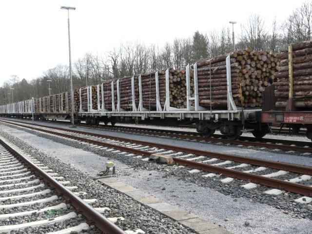 Kyrill-Holztransport im Güterbahnhof Menden