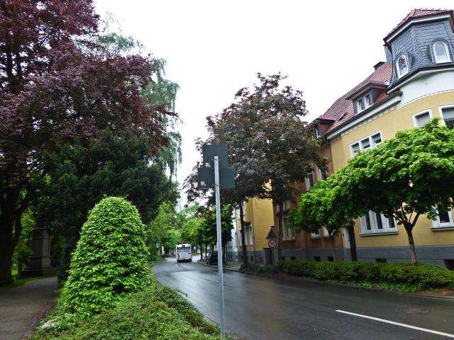 Walramstr., gegenüber Lohmühle, mit oberem Arboretum