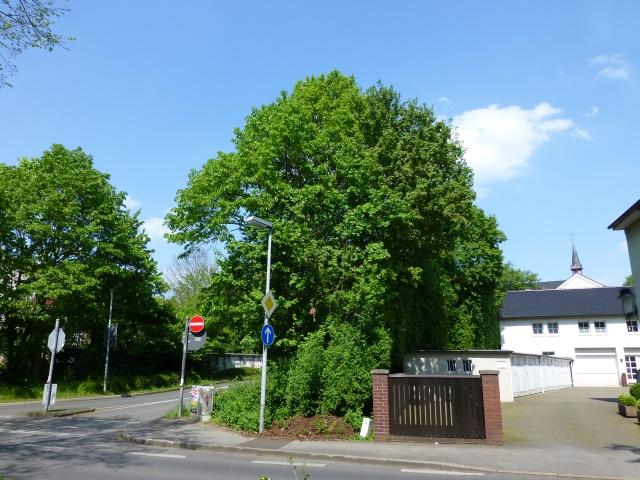 Südwall-Durchstich / Walramstr.