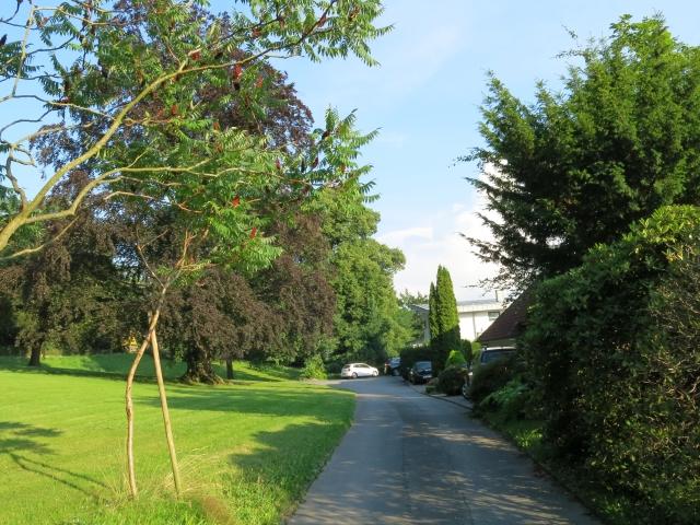 Wohnstraße unterhalb Wilhelmshöhe-Park