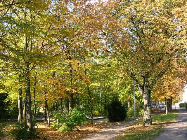 oberer Park Wilhelmshöhe mit Spielplatz