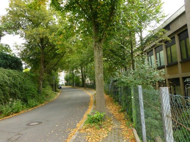 mitte-untere Straße Am Stein, hinterm Krankenhaus