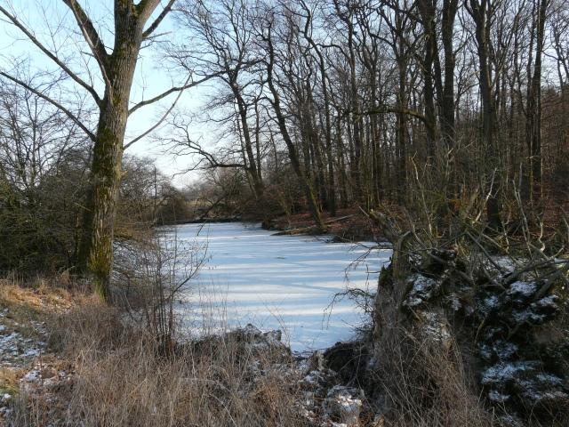 östliches Ruhraltwasser von Westen