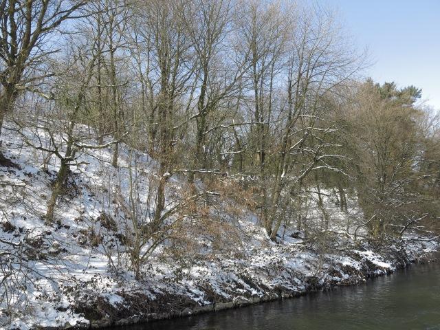 Hönne-Steilufer zwischen Wehrland und Landwehr