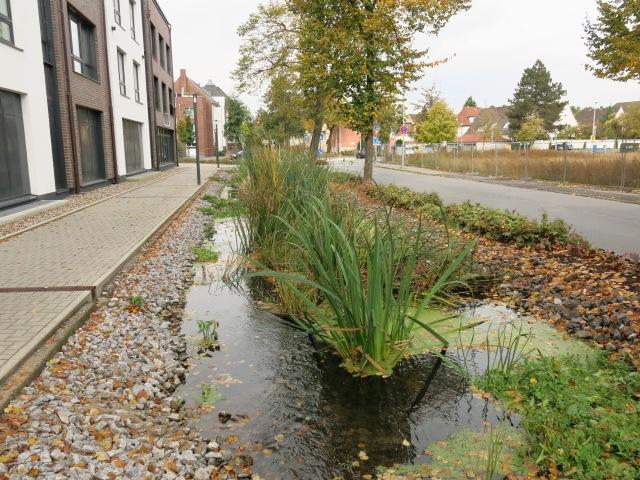 obere Bodelschwinghstr., neben MZH, mit Wassergraben