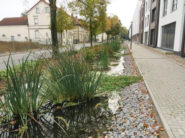 mitte-obere Bodelschwinghstr., mit Wassergraben, Richtung Süden