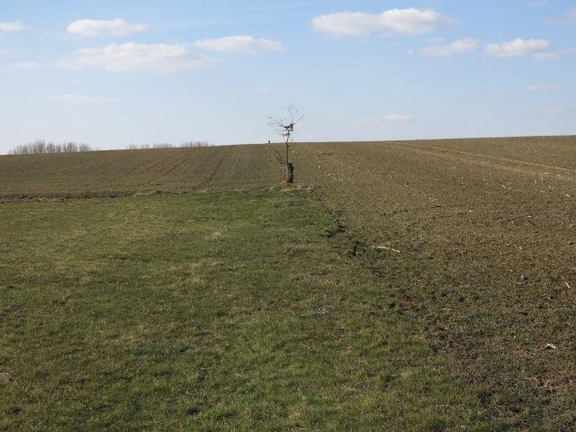 Grenze Menden-Wickede zwischen Brakel und Beringhof; Menden links