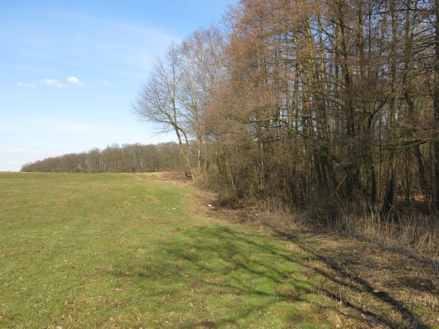 Stadtgrenze am Brakel-Wäldchen, Richtung Ost (hinten Beringhof-Wald)