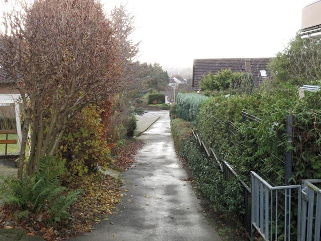 Fußweg Ob dem Glockenteich (im Bild) zur Gollackswiese