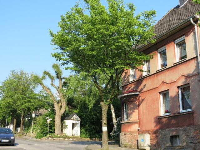 Bittfahrt / Ecke Goldacker
