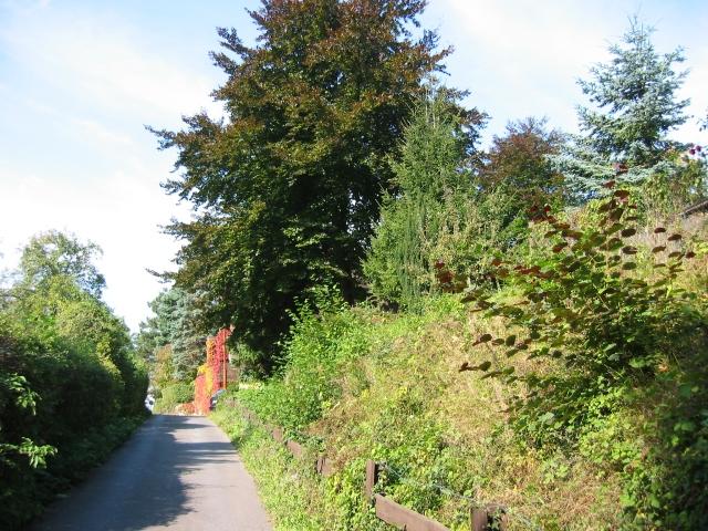 hinterer Antoniusweg
