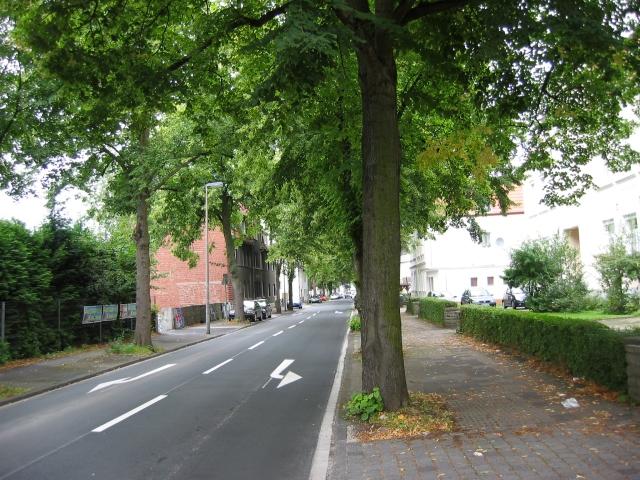 Wilhelmstr./Wilhelmschule, Richtung Nord